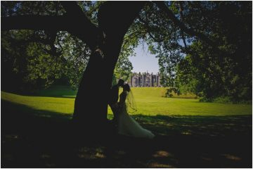 Bride and groom kiss silhouette by a tree